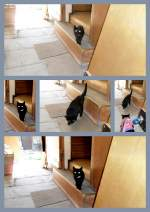 Tina/137551/zu-besuch-bei-tina Zu Besuch bei Tina