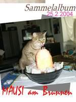 Mausi/120691/mausi-am-brunnen-februar-2004 Mausi am Brunnen Februar 2004