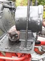 Maunzerle/102645/maunzerle-hat-ihren-platz-gefunden Maunzerle hat ihren Platz gefunden